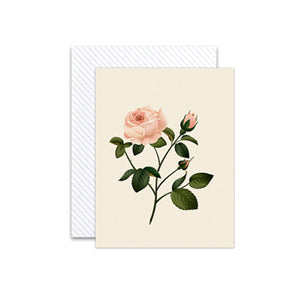 Botanical Rose Scented Card