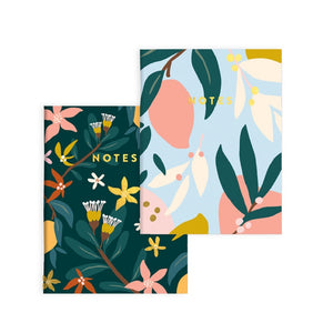 Mango Pocket Notebook Set