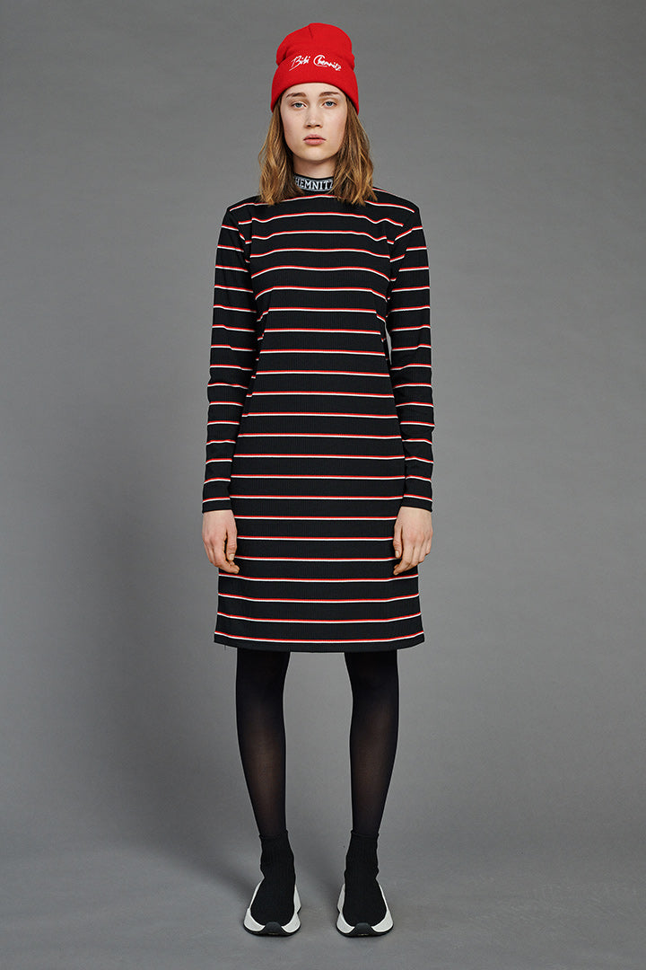 BIBI Rib Turtleneck Dress (Striped)