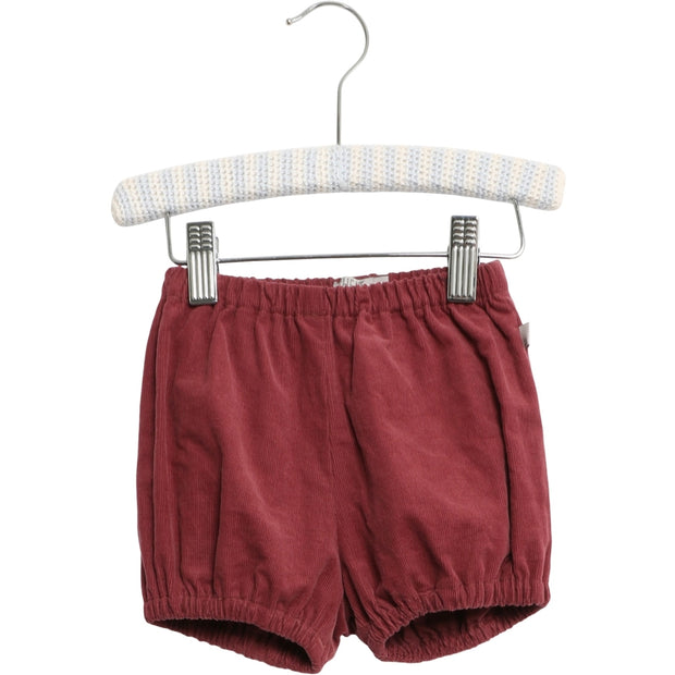 Wheat Shorts Ashton Shorts 2105 burgundy