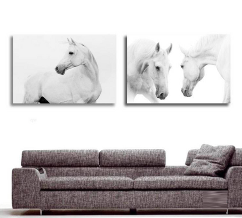 White Horse Wall Art 16x24