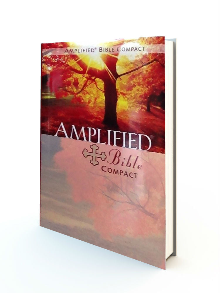 Amplified Bible - Compact Size