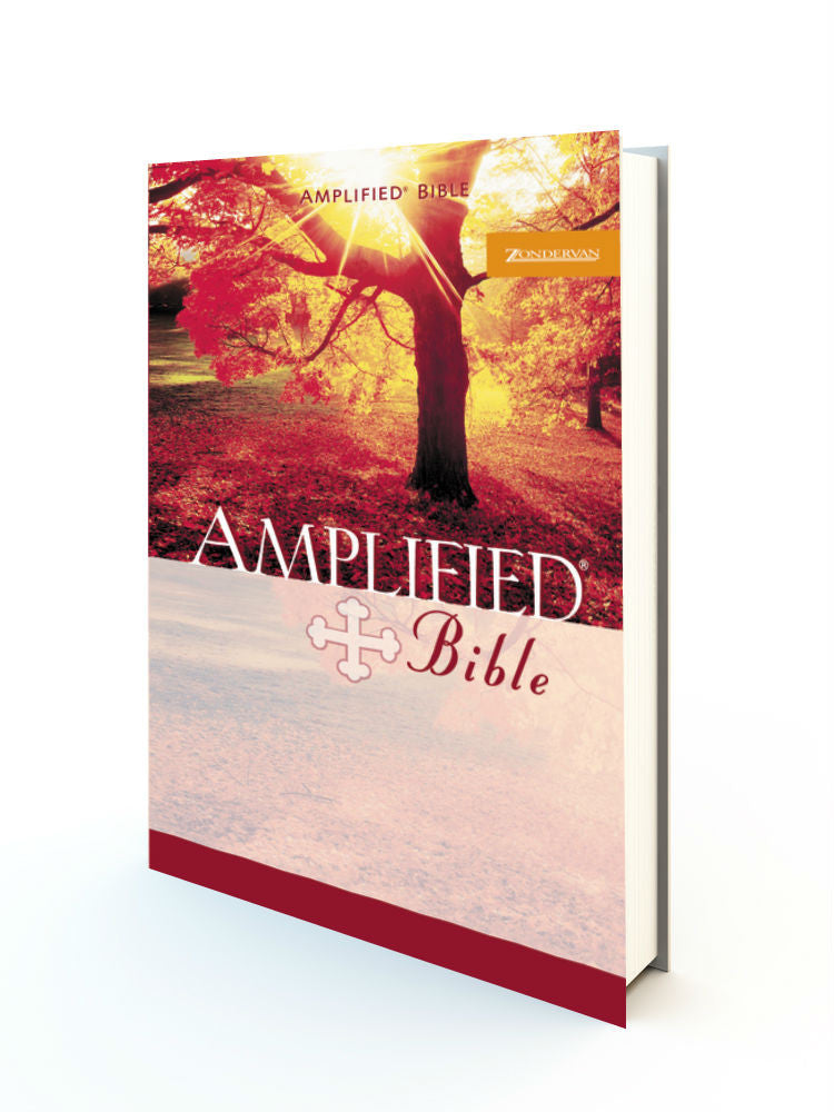 Amplified Bible - Small Size