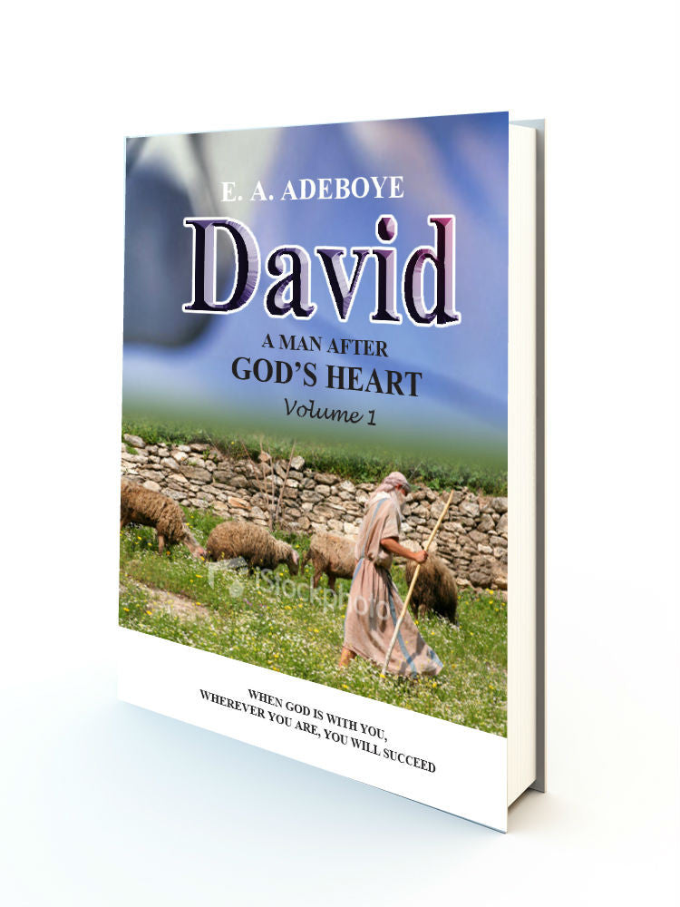 DAVID A MAN AFTER GOD'S HEART - Redemption Store