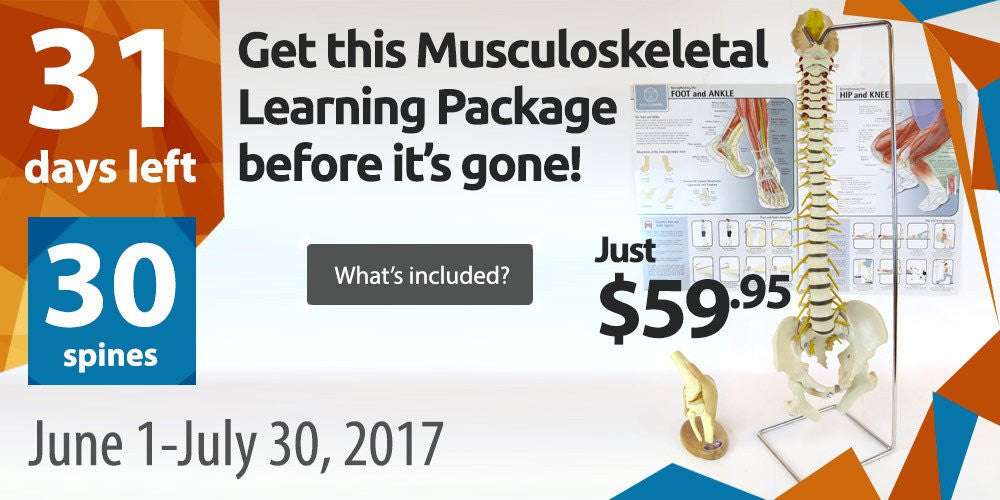 Get the Musculoskeletal Learning Package Before It's Gone!