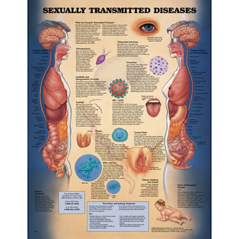 2849-08 Sexually Transmitted Diseases