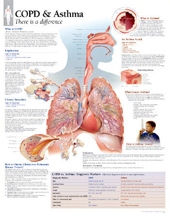 2355-08 COPD/Asthma