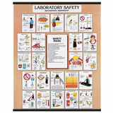 2029-10  Lab Safety and Laboratory Techniques Chart SET