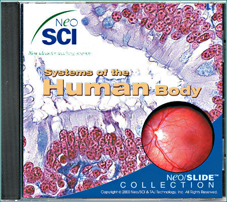 CD85  Systems of the Human Body