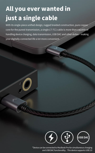 FiiO LT-TC1 Type-C to Type-C USB Cable - Gears For Ears