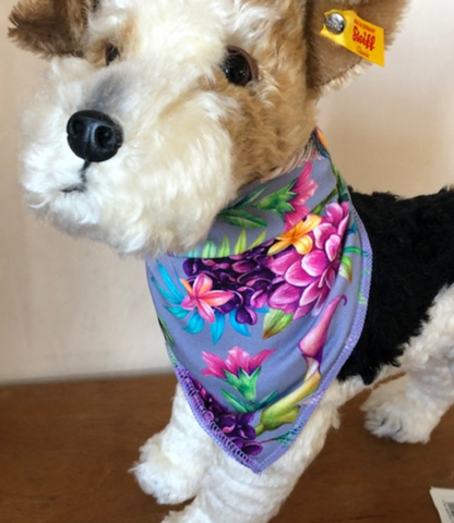 Humming bird pet bandana self tie