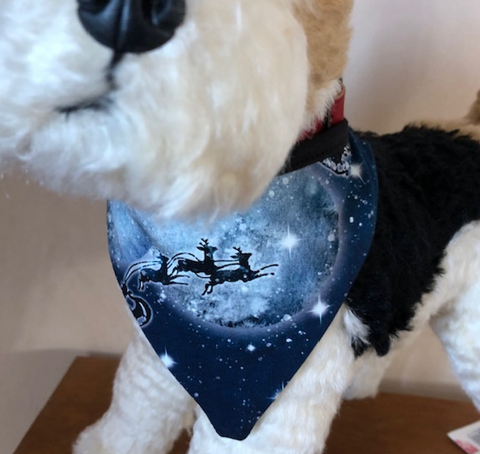 Magical night pet Bandana binding tie