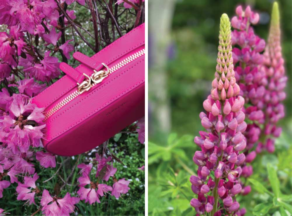 Pink Handbag and Flowers