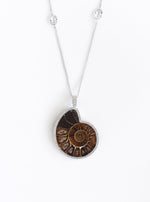 Ammonite long necklace