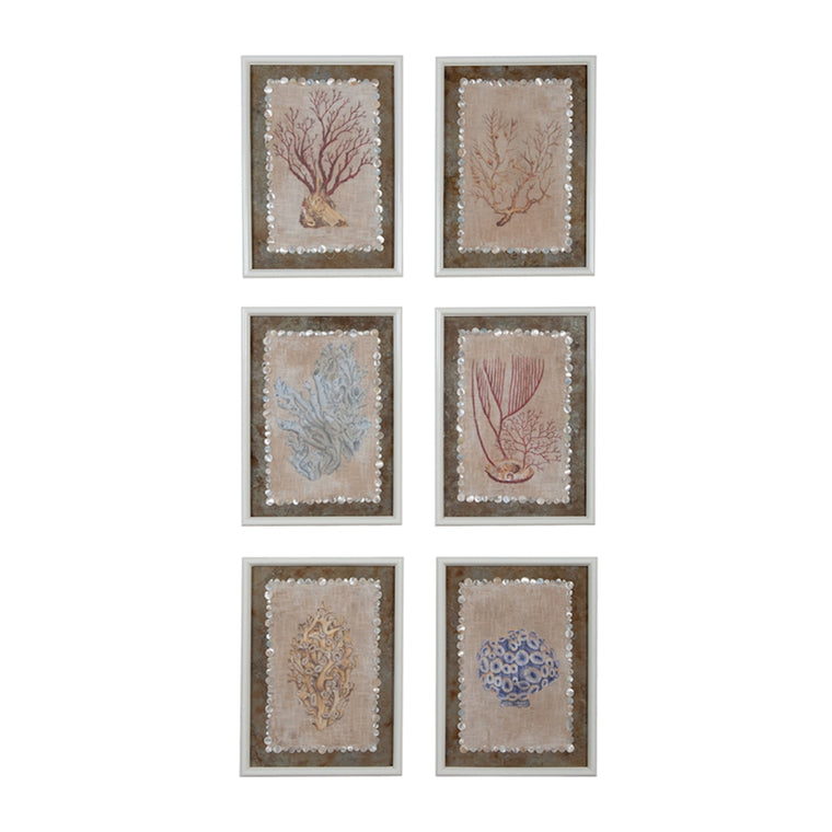 """Coral Studies"" Ocean Wall Art"