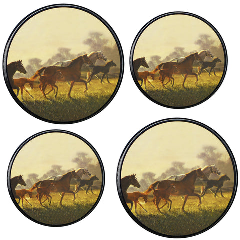 Tin Burner Cover Set, A brand New Hope