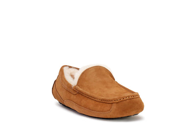 ugg-mens-ascot-slipper-chestnut-suede-3/4shot
