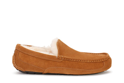 ugg-mens-ascot-slipper-chestnut-suede-main