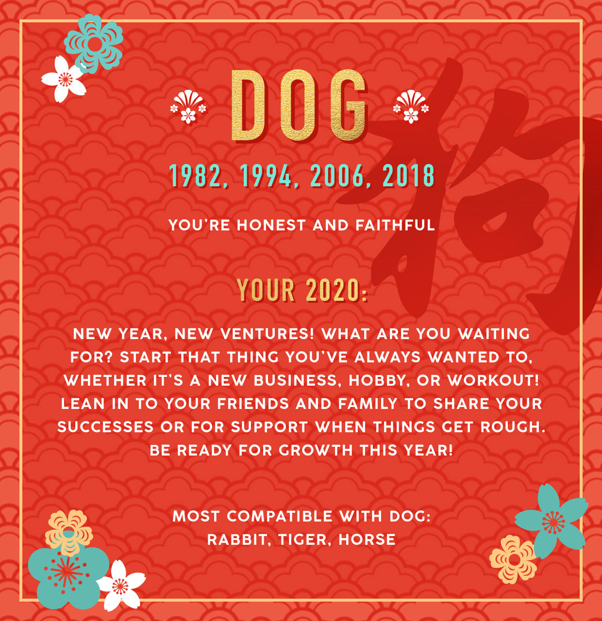 Dog Lunar New Year Collection Banner Image