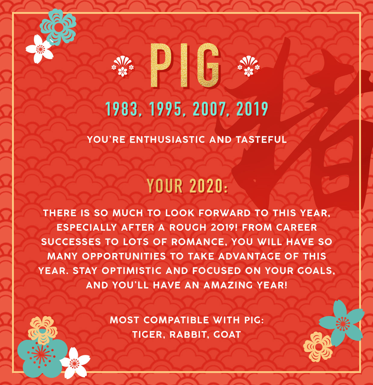 Pig Lunar New Year Collection Banner Image