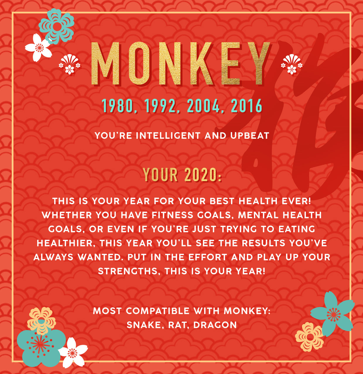 Monkey Lunar New Year Collection Banner Image