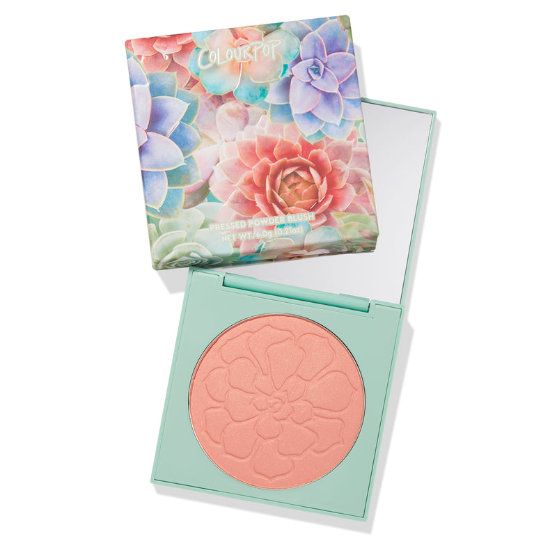 Desert Rose warm pink with gold pearl Pressed Powder Blush compact with mirror
