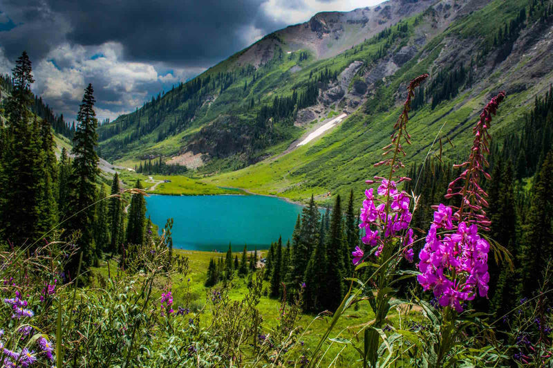 Brooke's Picks: Crested Butte, Colorado