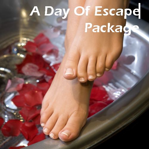 Package A Day of Escape Card