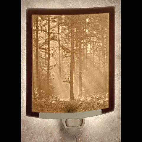 The Porcelain Garden Inc. - Woodland Sunbeam Curved Night Light