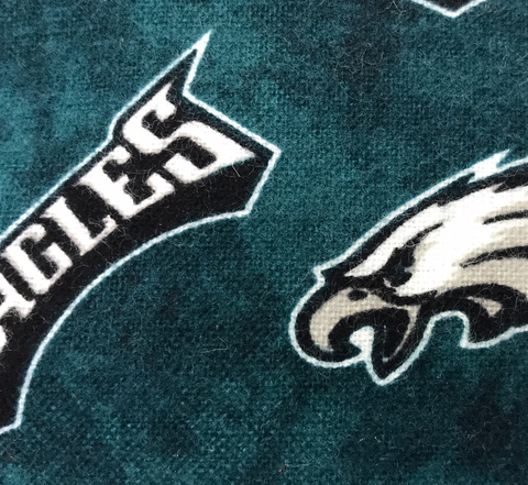 Eagles Cotton Pillow