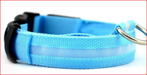 Nylon Pet Glow Safety Collar - 6 colors available
