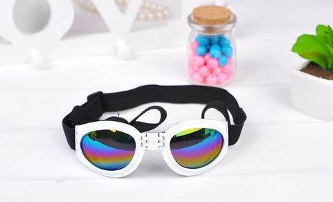 Foldable Dog Waterproof Sunglasses