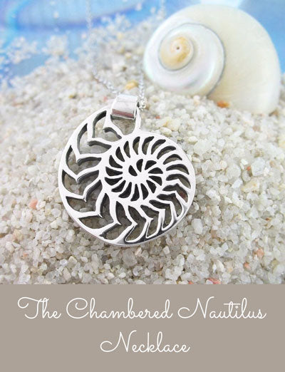 chambered nautilus necklace