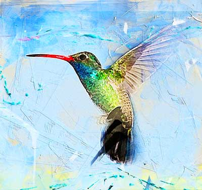 hummingbird dream meaning