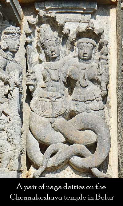 a pair of naga deities on the Chennakeshava temple