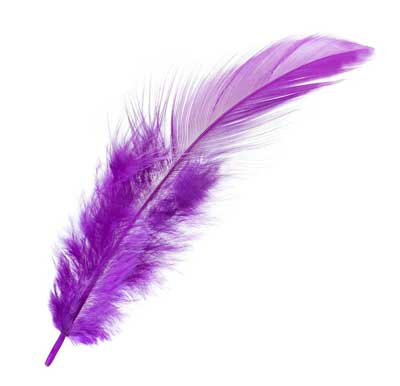 purple feather meaning
