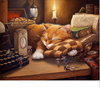 Image of Cute Sleeping Cat DIY Painting By Numbers - For Gift 40x50cm - Ezy Buy Outlet