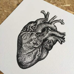dotwork anatomical heart art print by tattoo artist die monde
