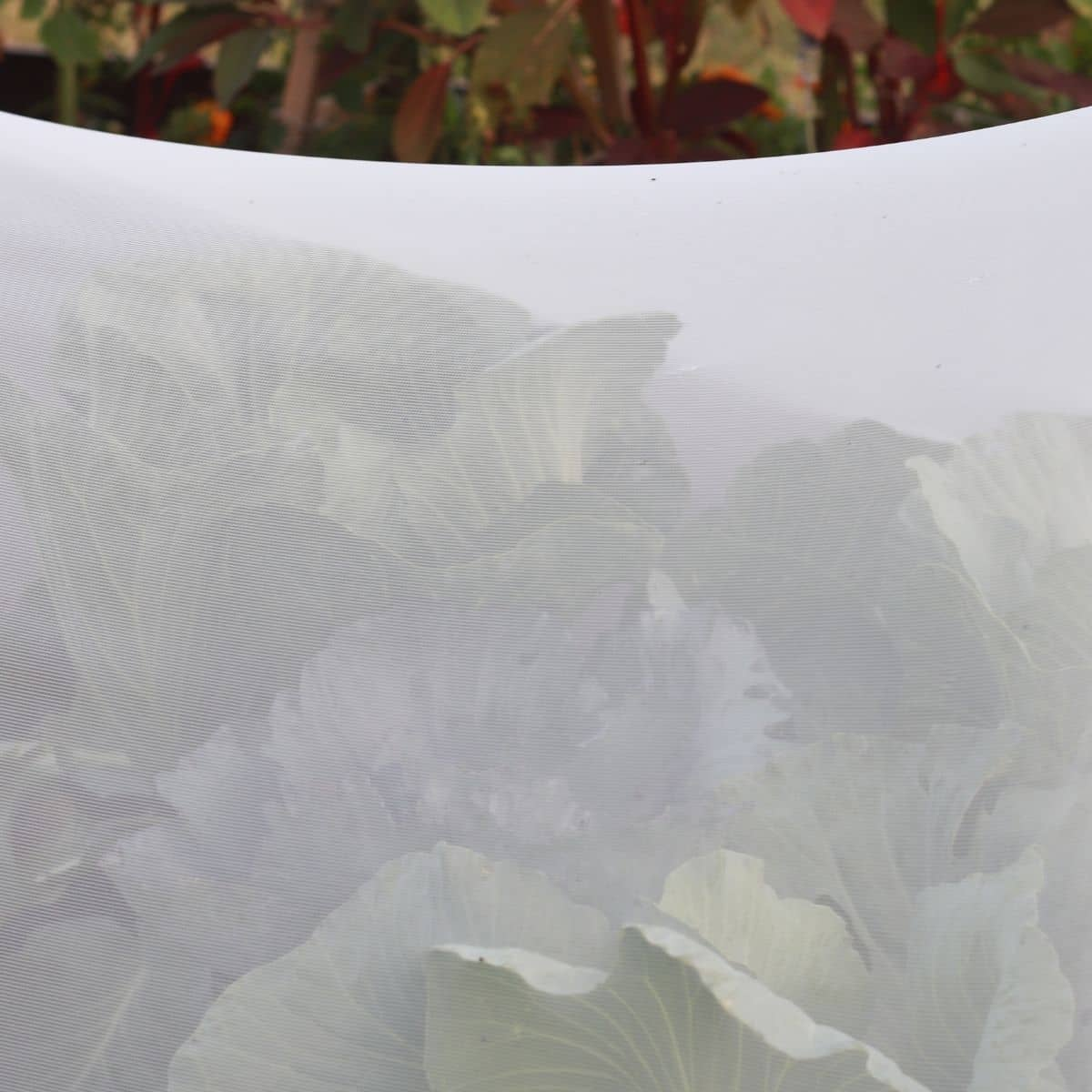 insect netting for row crops