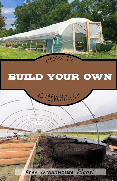 How to Build A Greenhouse | Find Free Homemade Greenhouse