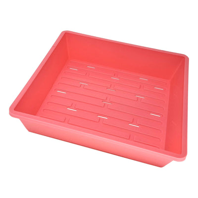 1010 Trays Pink