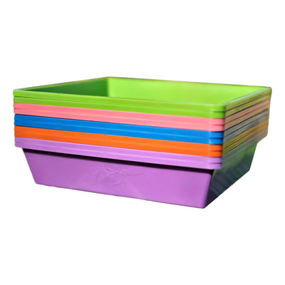 1010 Trays Multi color with Holes