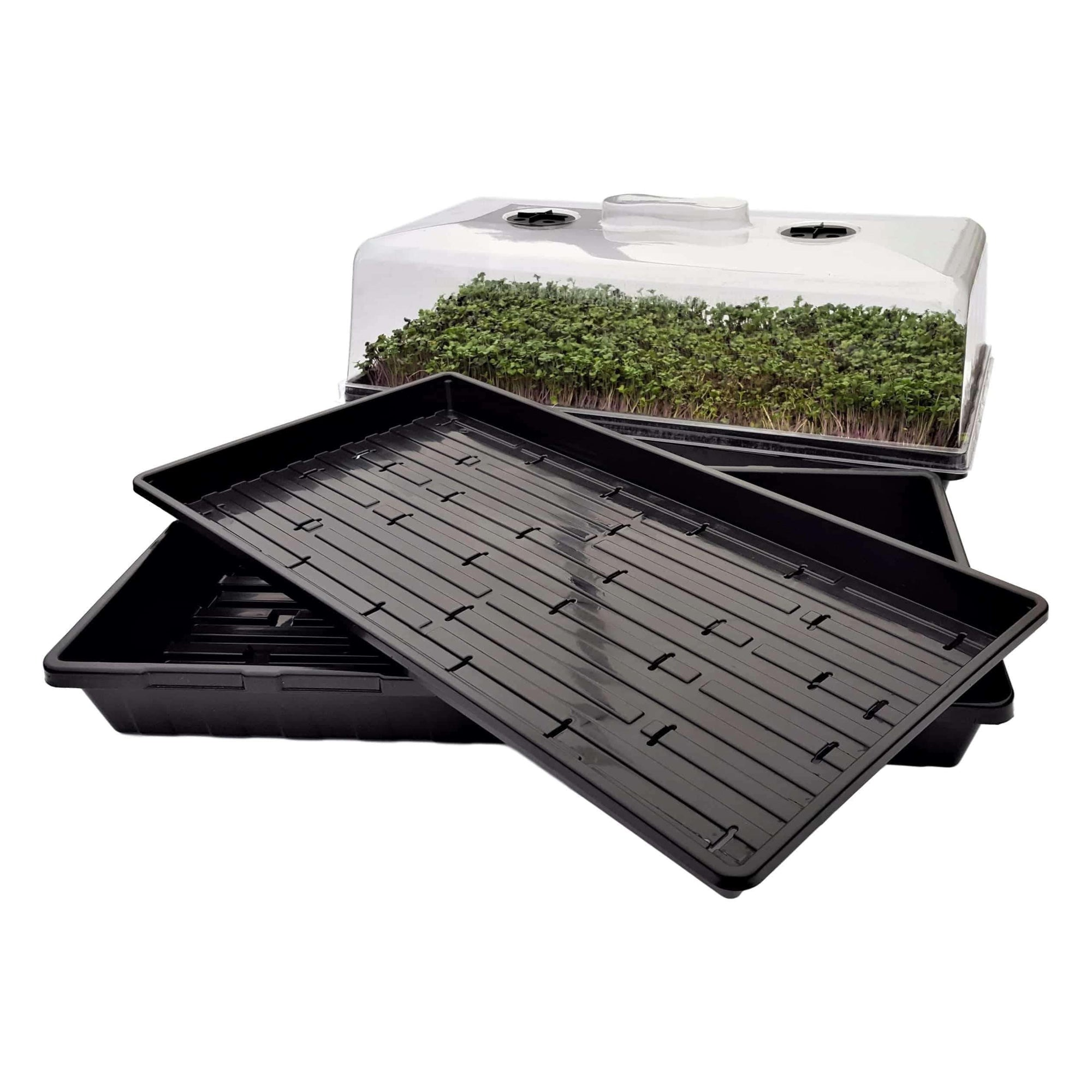 Microgreen Tray Kit