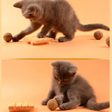 Natural Catnip Treat Ball For Cats