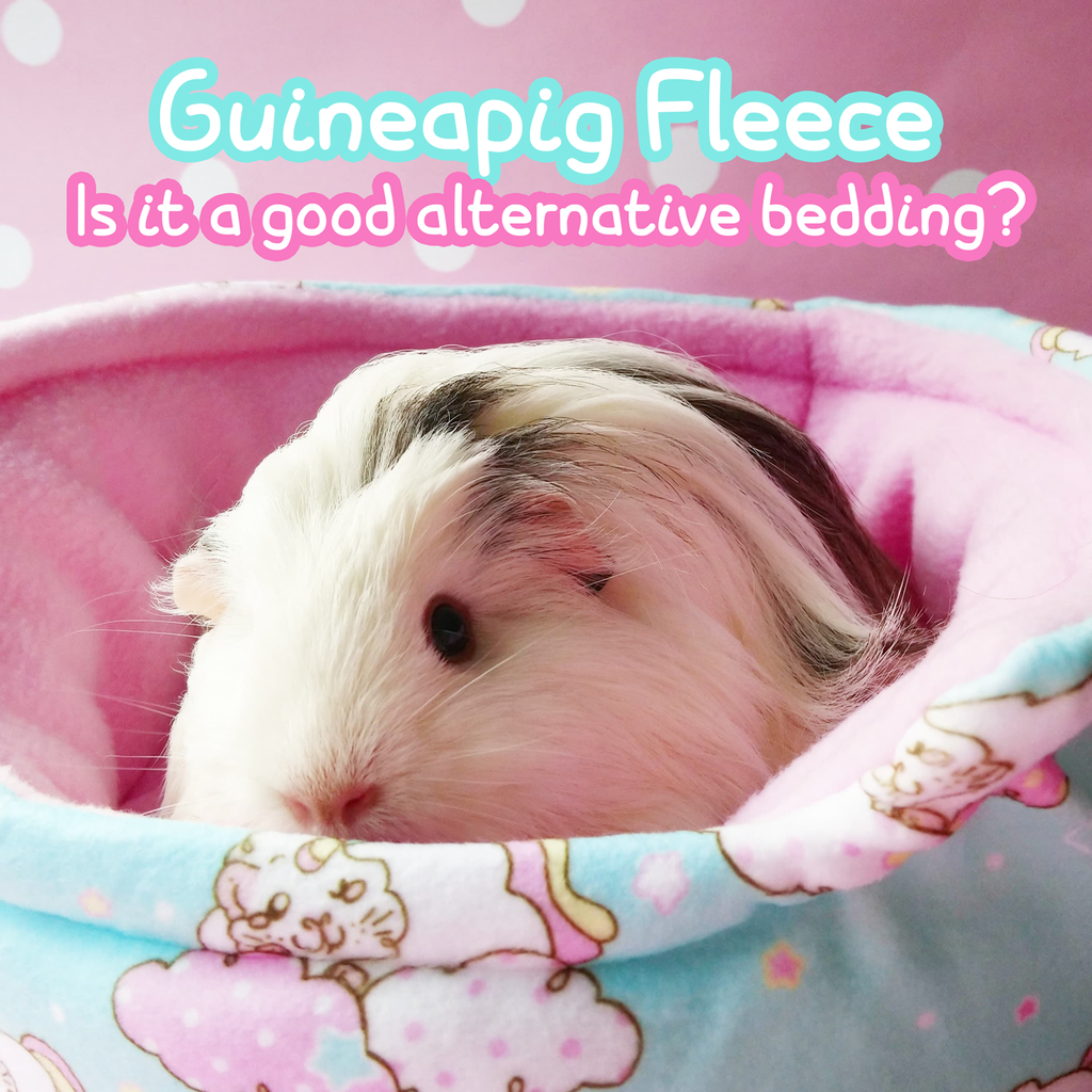 Guinea Pig Fleece 101 : Is fleece a good bedding eco alternative for piggies?