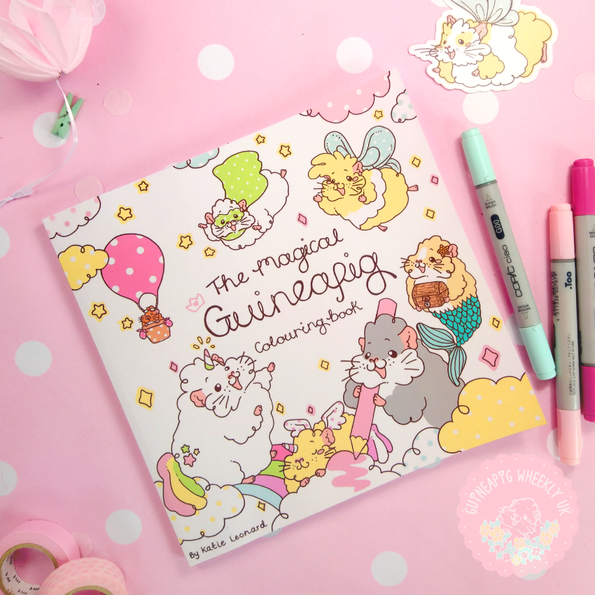 Guinea Pig Colouring Book