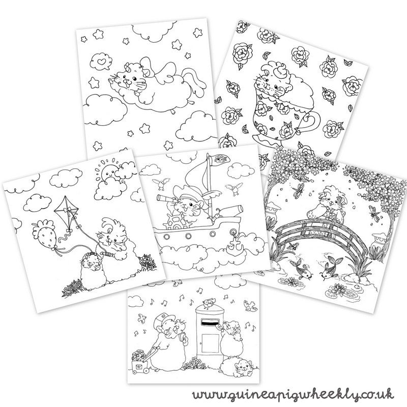 Magical Guinea Pig Colouring Book - Guineapig Wheekly UK