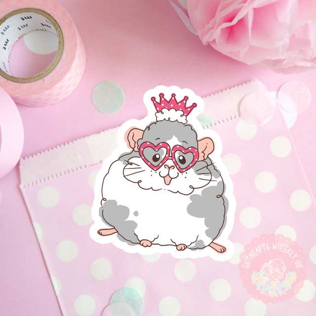 Heart Glasses Guinea Pig Vinyl Sticker