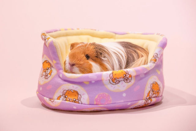 Donut cuddle cup Guinea Pig Bed