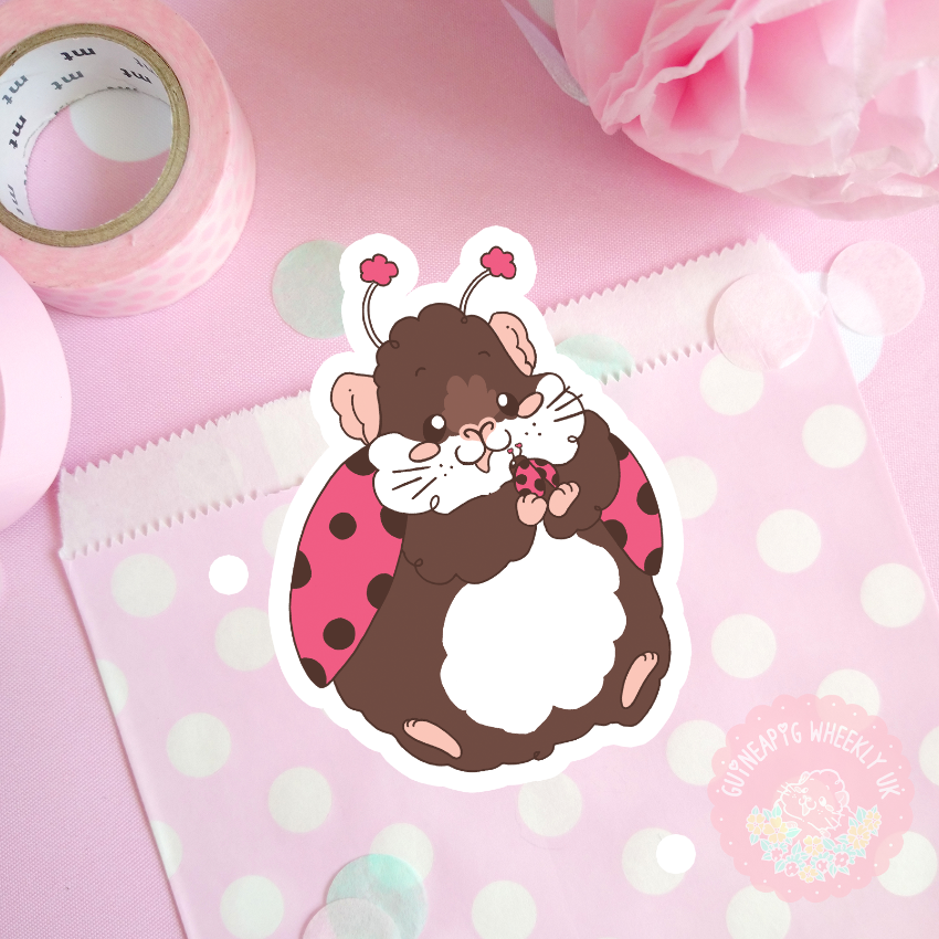Lady Bug Guinea Pig Vinyl Sticker